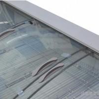 星星鲜肉柜SC-602BP 冷藏保鲜柜冷冻海鲜柜冰粥柜商用配菜展示柜