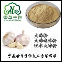 脱臭大蒜粉80目 香草生物供应大蒜速溶粉全溶于水 脱水大蒜粉调味品