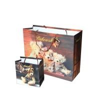 山东印刷厂生产纸类包装袋 服装包装手提袋  **