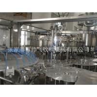 全自动瓶装碳酸饮料灌装线 碳酸含气饮料生产设备